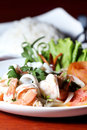 Shrimp, squid salad mixed. Royalty Free Stock Images