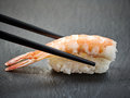 Shrimp sushi Royalty Free Stock Photo