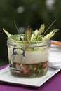 Shrimp and vegetable aspic with asparagus emulsion Royalty Free Stock Photography