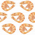 Shrimps, seamless pattern. Watercolor hand drawn background. Royalty Free Stock Photo