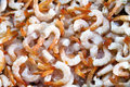 Shrimps stacked in display for sale at the fish market Royalty Free Stock Photography