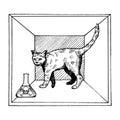 Shroedinger cat in box poison engraving vector