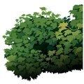 Shrub cartoon plant vector illustration Royalty Free Stock Photo