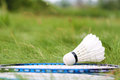 Shuttlecock and rackets for badminton on the green grass summer game healthy lifestyle Royalty Free Stock Images