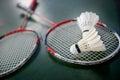 Shuttlecocks and badminton racket Royalty Free Stock Photo