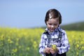 Shy young girl near canola field innocent cute child with yellow flower in hands expressing emotion Stock Photos