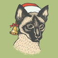 Siam cat vector illustration