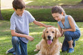 Sibling with their dog in the park on a sunny day Royalty Free Stock Image