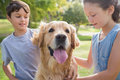 Sibling with their dog in the park on a sunny day Royalty Free Stock Photography