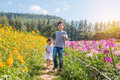 Sibling walking in flower park Royalty Free Stock Photo