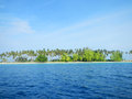 Sibuan Island with trees Royalty Free Stock Photos