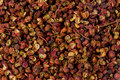 Sichuan pepper background texture of or prickly ash Stock Images