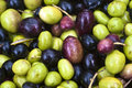 Sicilian olives background picking Royalty Free Stock Image