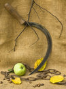 A sickle with a chain and an apple in autumn mood Stock Photo