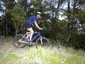 Side profile of a young man mountain biking Stock Image
