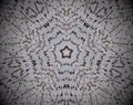 5 sided star shape extruded mandala
