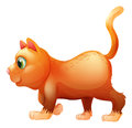 A sideview of a fat cat illustration on white background Stock Images