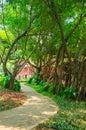 Sidewalk with tree Royalty Free Stock Photo