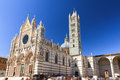 Siena cathedral beautiful cityscape of italy with the duomo di with a blue sky in summer Stock Photography
