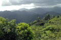 Sierra maestra rainy day in the mountains of cuba Stock Photos