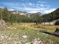 Sierra meadow, California Stock Image