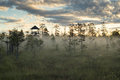 Sightseeing tower in wetlands latvian just after the sunrise Stock Photography