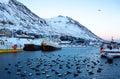 Siglufjordur harbor with fishing boats at dawn. Royalty Free Stock Photo