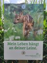 Sign with a fawn - my life is clinging on your leash Royalty Free Stock Photo