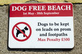 Sign dog free beach a saying from st may th september not allowed on the Royalty Free Stock Photos