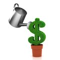 Sign of dollar, growing in a flowerpot Royalty Free Stock Photo