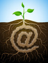At sign like root of plant graphic concept germination roots and tuber in form symbol qualitative vector eps illustration about Royalty Free Stock Photography