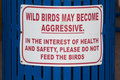 Sign not to feed the aggressive wild birds Royalty Free Stock Photo