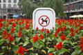 Sign prohibiting dog walking in a botanical garden no dogs sing in flowers Royalty Free Stock Images