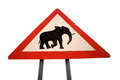 Sign road with animal warning that elephants could cross the in namibia Stock Images