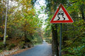 Sign slippery road an image of in forest Royalty Free Stock Image