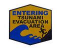 Sign Tsunami, isolated Stock Image