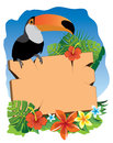 Signboard tucan and tropical flowers Royalty Free Stock Photos
