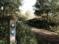 Signpost and path a beside a in the forest Royalty Free Stock Images