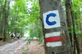 Signs for hikers in the woods Royalty Free Stock Image