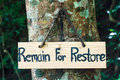 Signs remain for restore on tree background Stock Image