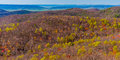 Signs of spring in the blue ridge seen from skyline drive in sh shenandoah national park virginia Stock Images