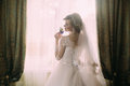 Silhouette of beautiful bride in traditional white wedding dress, stood by window. Royalty Free Stock Photo