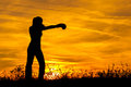Silhouette of the boxing girl in the nature exercising at sunset Stock Image