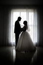 Silhouette of bride and groom Royalty Free Stock Photo