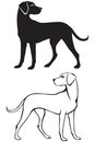 Silhouette and contour dog Royalty Free Stock Image