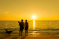 Silhouette couple dog beach sunset Stock Image