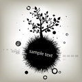 Silhouette d'arbre Photo stock