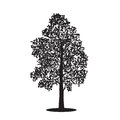 Silhouette detached tree birch with leaves, vector illustrations Stock Image