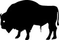 Silhouette of European bison Stock Photos