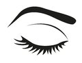 Silhouette of eye lashes and eyebrow